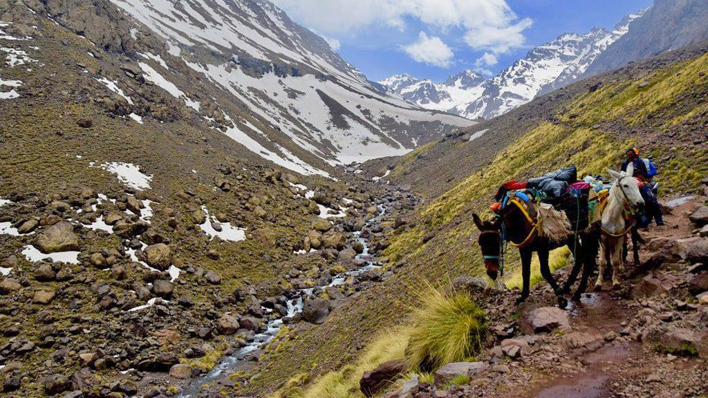 2 days mount toubkal trekking