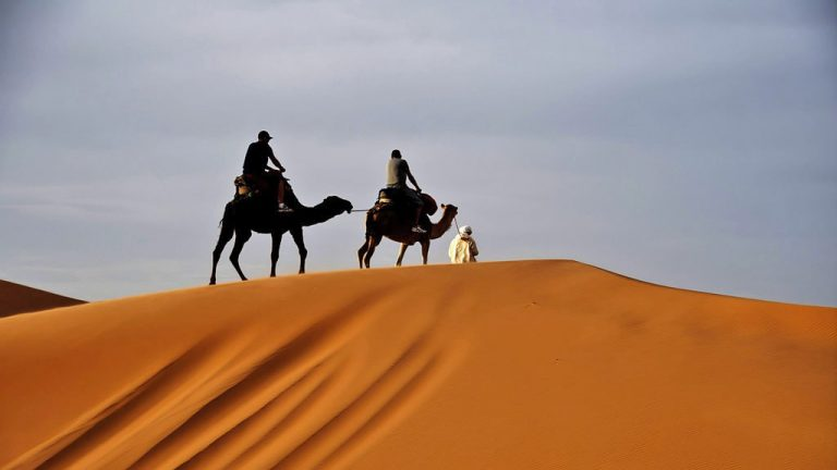 Morocco day trips - Fez to Marrakech Desert Tour & Camels
