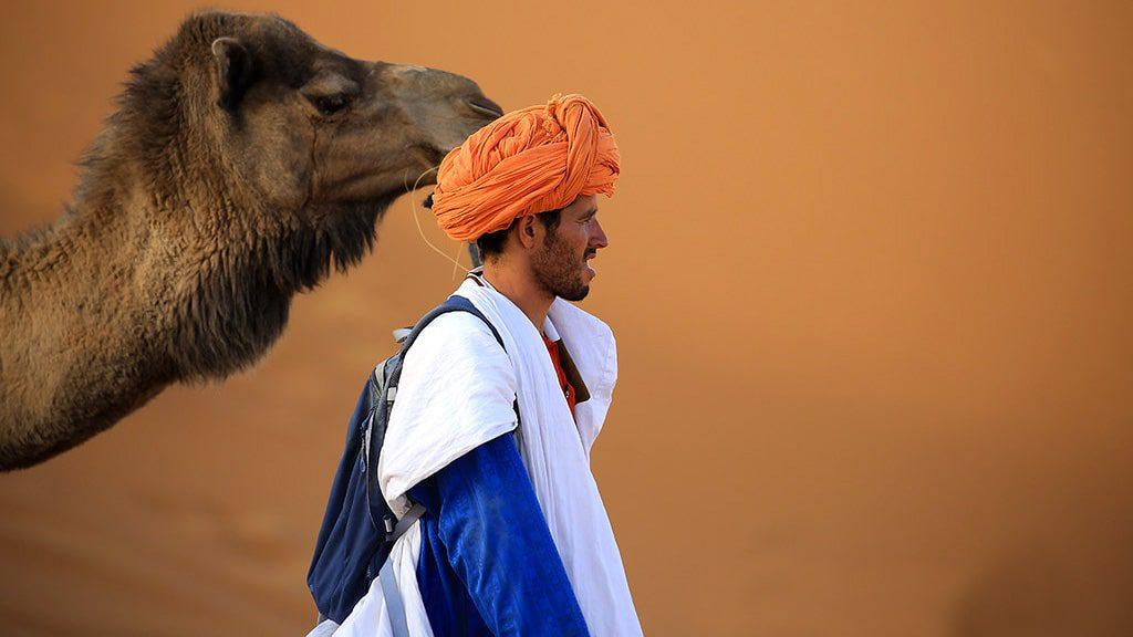 Sahara Desert - Marrakech to Fez Desert Camel Tour